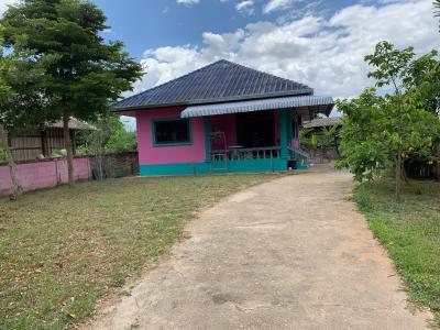 บ้านเดี่ยว 1950000 เชียงราย แม่สรวย ป่าแดด